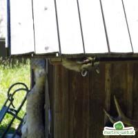 Der wilde Berg - Waschbär